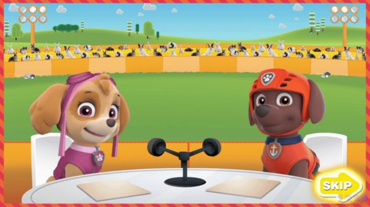 Paw-Patrol-Nick-Jr-Super-Snuggly-Sports-Spectacular-by-Nickelodeon