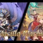 [Granblue Fantasy] Lv100 Macula Marius Solo #20 (Earth Runeslayer w/ Tetrastreamer) − アフィリエイト動画まとめ