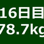 【16日目】ひきこもりデブ-30kgダイエット計画!!【78.7kg】 − アフィリエイト動画まとめ