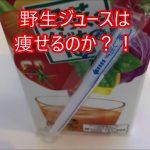 ダイエット!野菜ジュースはダイエット向き?! − アフィリエイト動画まとめ