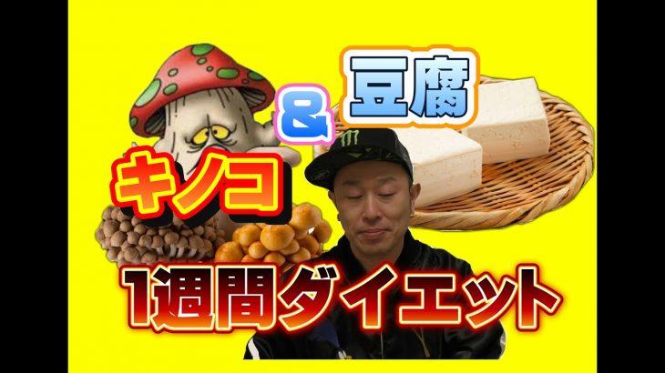 豆腐とキノコで1週間プチダイエット − アフィリエイト動画まとめ