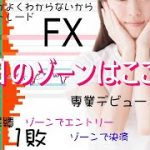 【FXライブ】7/16 3部 オーダーブック&ゾーントレード ファンダとかよくわからないからシンプルFX − アフィリエイト動画まとめ