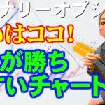 【30秒】ここが勝ちやすいチャート!「バイナリーオプション」前田康人 − アフィリエイト動画まとめ