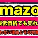 Amazon転売で本当の最低価格を知る方法!売れない理由をモノレートで解説! − アフィリエイト動画まとめ