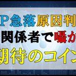仮想通貨News:XRP急落原因判明!!市場関係者で囁かれる期待のコイン − アフィリエイト動画まとめ