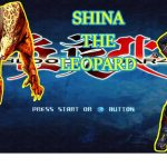 Bloody Roar 4 PS 2 | Game play Shina The Leopard − アフィリエイト動画まとめ