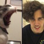 Best Tik Tok Memes Compilation V1 – アフィリエイト動画まとめ