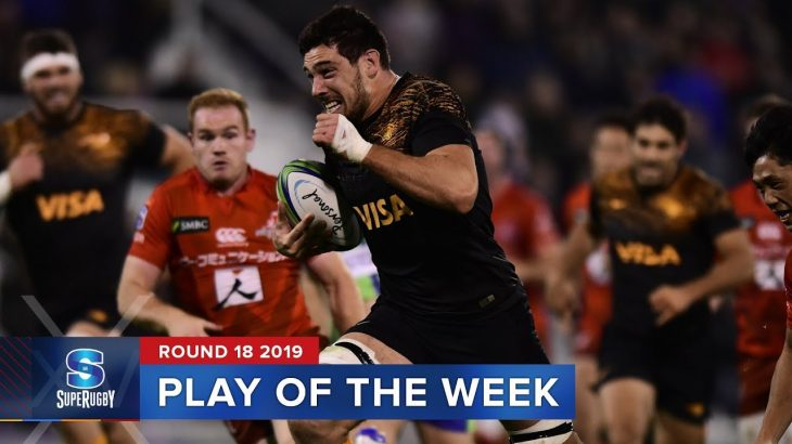 PLAY OF THE WEEK | Super Rugby 2019 Rd 18 − アフィリエイト動画まとめ