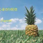 初心者のFX配信【8/15】 − アフィリエイト動画まとめ