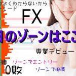 【FXライブ】8/14 2部 オーダーブック&ゾーントレード ファンダとかよくわからないからシンプルFX − アフィリエイト動画まとめ