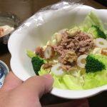 【ダイエットの晩ご飯】40代男性(かげやん)の糖質制限の食事 2019 10 18(金) − アフィリエイト動画まとめ