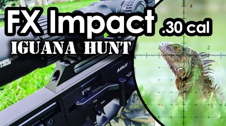 FX-Impact-.30-cal-Airgun-Hunting-Orion-the-Iguana-Hunter
