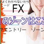 【FXライブ】11/4 3部 ゾーントレード ファンダとかよくわからないからシンプルFX − アフィリエイト動画まとめ