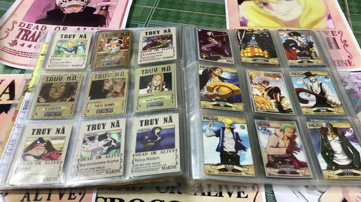 Bất Ngờ Với Album Thẻ One Piece Được Tặng | Đại Luffy Không Tin Vào Mắt Mình – アフィリエイト動画まとめ