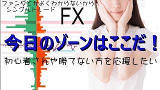【FXライブ】11/19 3部 ゾーントレード ファンダとかよくわからないからシンプルFX − アフィリエイト動画まとめ