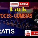 PACK FX VOCES CUMBIAS ANDRES DJ REMIX GRATIS − アフィリエイト動画まとめ