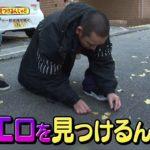 【テレビ千鳥】街でエロを見つけるんじゃ!! 1月20日放送 − アフィリエイト動画まとめ